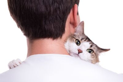 Here's How to Have a Cat-Friendly Home