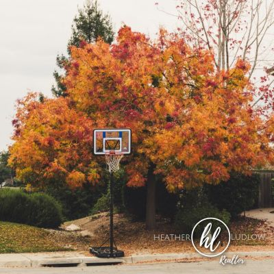 Fall Leaves Bring Sold Signs
