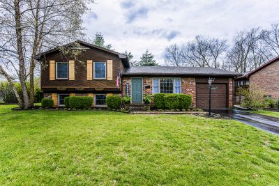 NEW LISTING 641 Severn Way Lexington, KY 40503