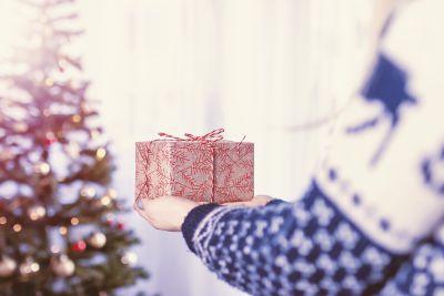 Find the Fun – December