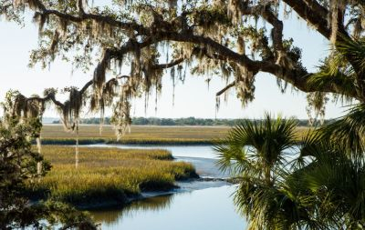 Day Trips from Jacksonville FL
