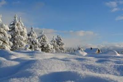 Joyces Voice…Winter can be the best time to sell! 5 REASONS TO SELL IN THE WINTER! CALL ME TODAY!