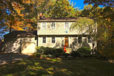Beautiful Franklin colonial on Private lot