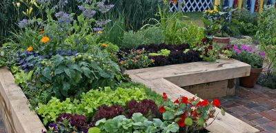 Time to Watch Your Gardens Grow