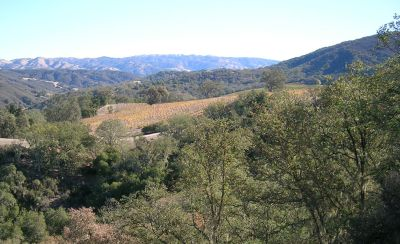 About Carmel Valley