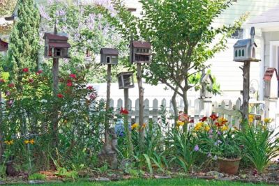 Say hello to butterflies and goodbye to mosquitoes with a cottage garden.
