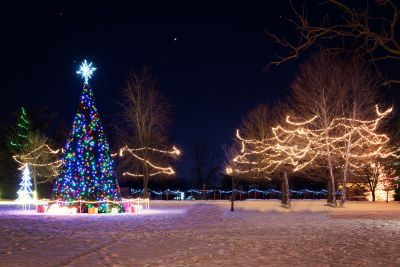 December Family Fun!  Christmas parades, tree lightings and holiday strolls