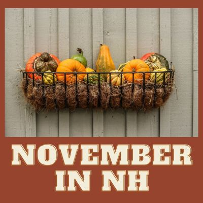 November Events to check out in NH!
