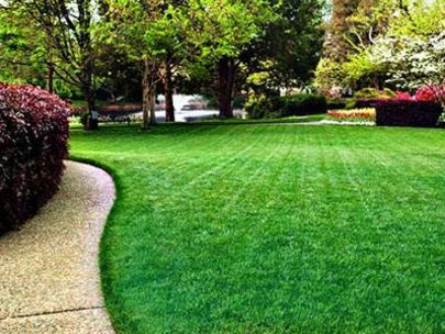 Lawn Care Tips for Each Season
