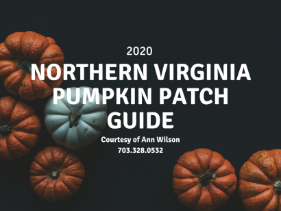 2020 Northern Virginia Pumpkin Patch Guide