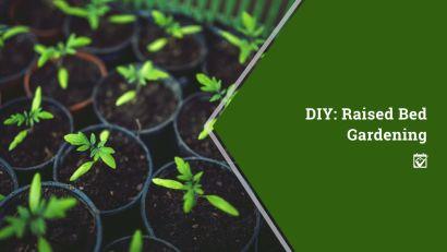 DIY:  Raised Bed Gardening