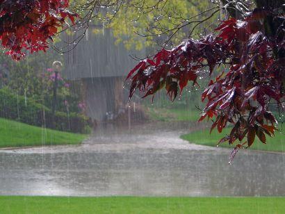 Rain, Rain Stay Just Where We Need You