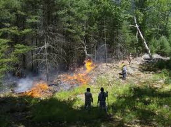 When Fire Strikes on an Island