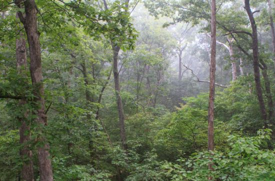 Tour the IBK Hiking Trails