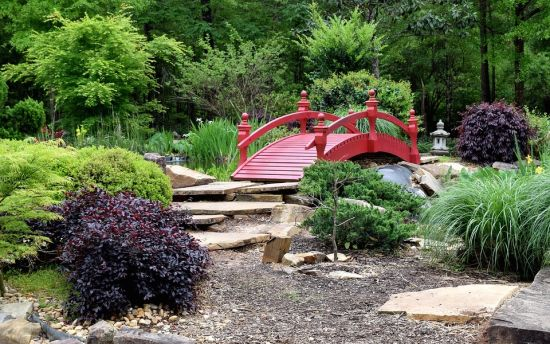 Spring into your new backyard?!