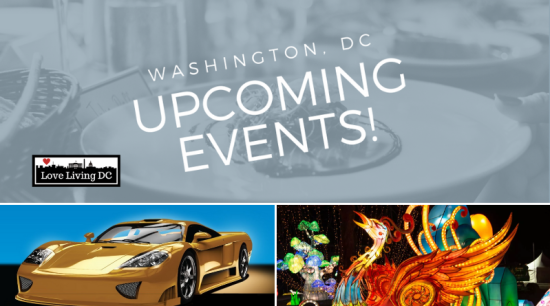 Top 10 Things To Do in Washington, DC This Weekend: January 24 – 26