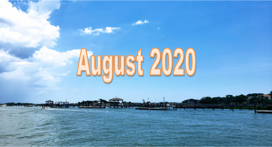 August 2020 Charleston Newsletter and Real Estate Update