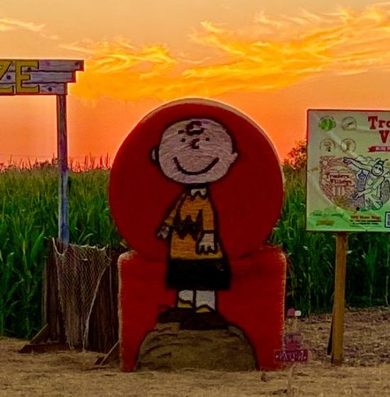 Whats Happening This Weekend – Corny Maze 2021