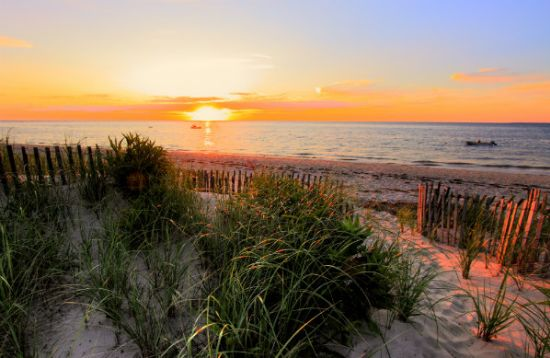 Why I Chose Cape Cod