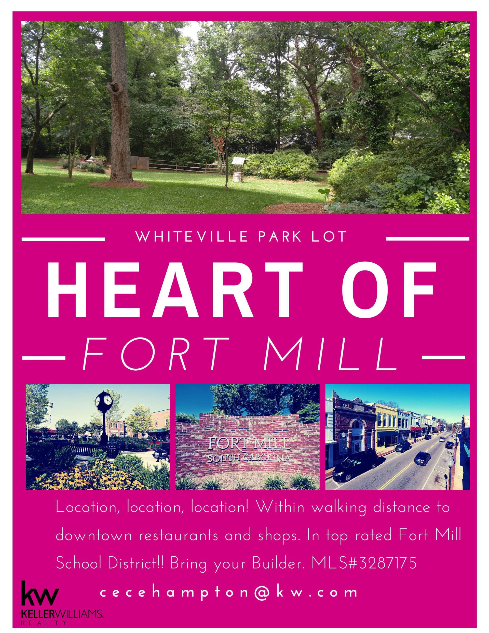 Whiteville Park LOT, Rare Find