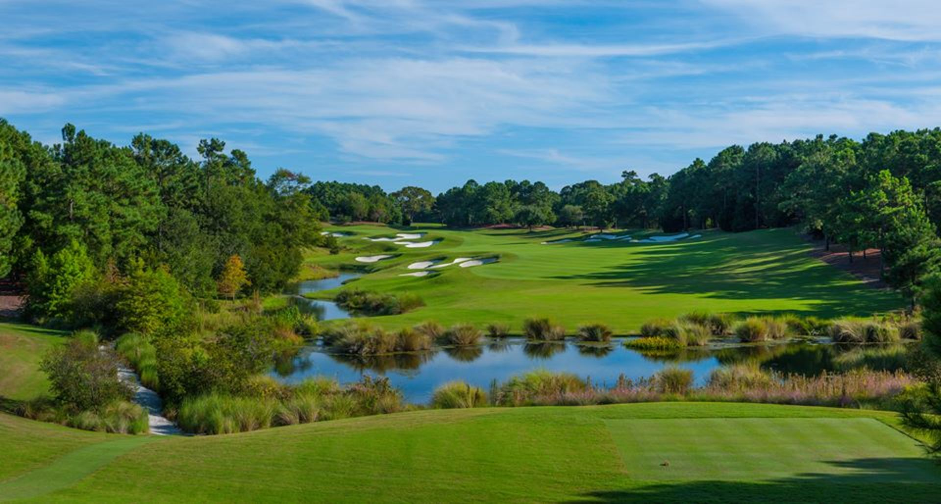 WELLS FARGO GOLF CHAMPIONSHIP AT EAGLE POINT GOLF CLUB | WILMINGTON, NC | MAY 1 – 7, 2017