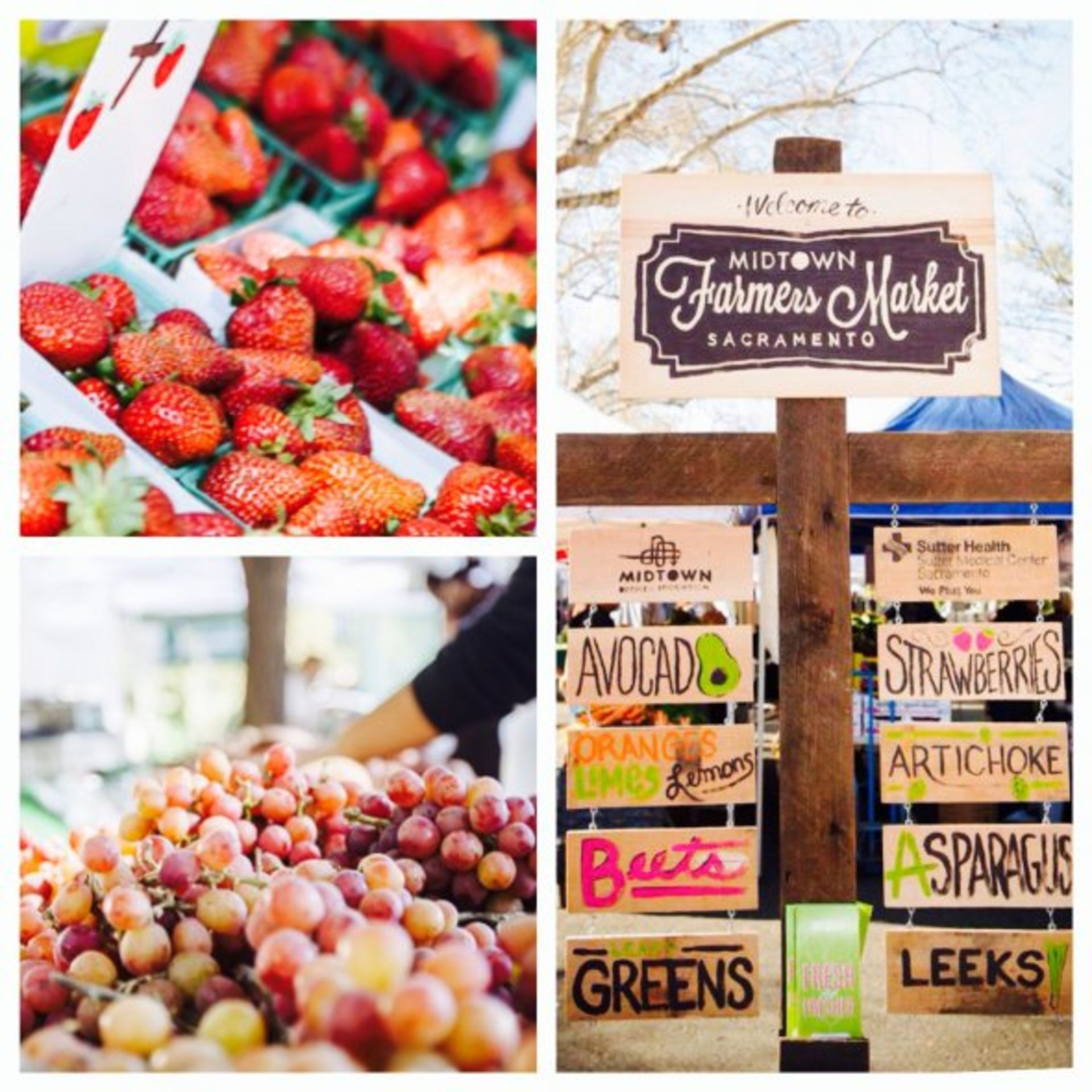 Farmers' Markets in the Sacramento Region