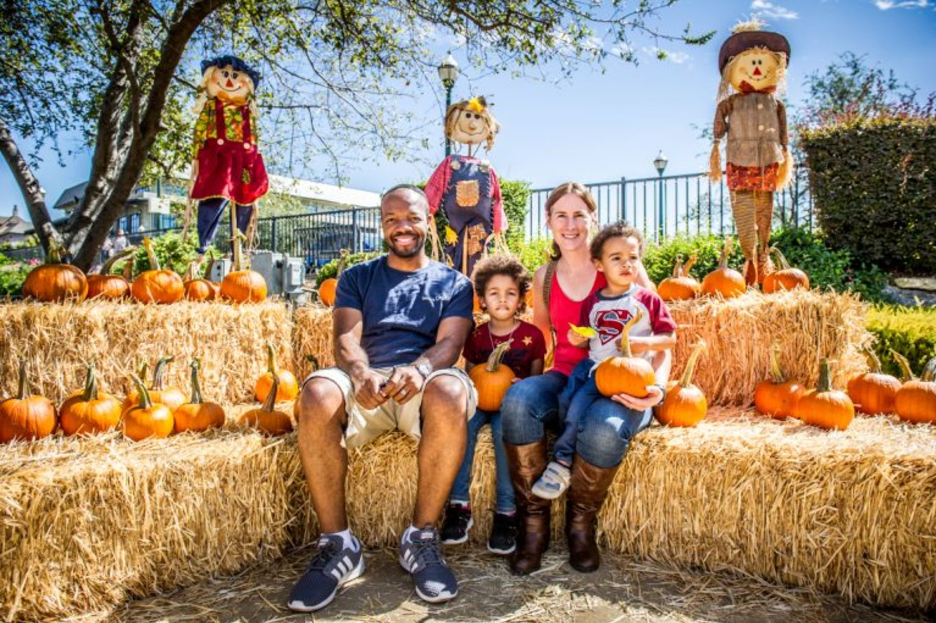El Dorado Hills Fall Festival