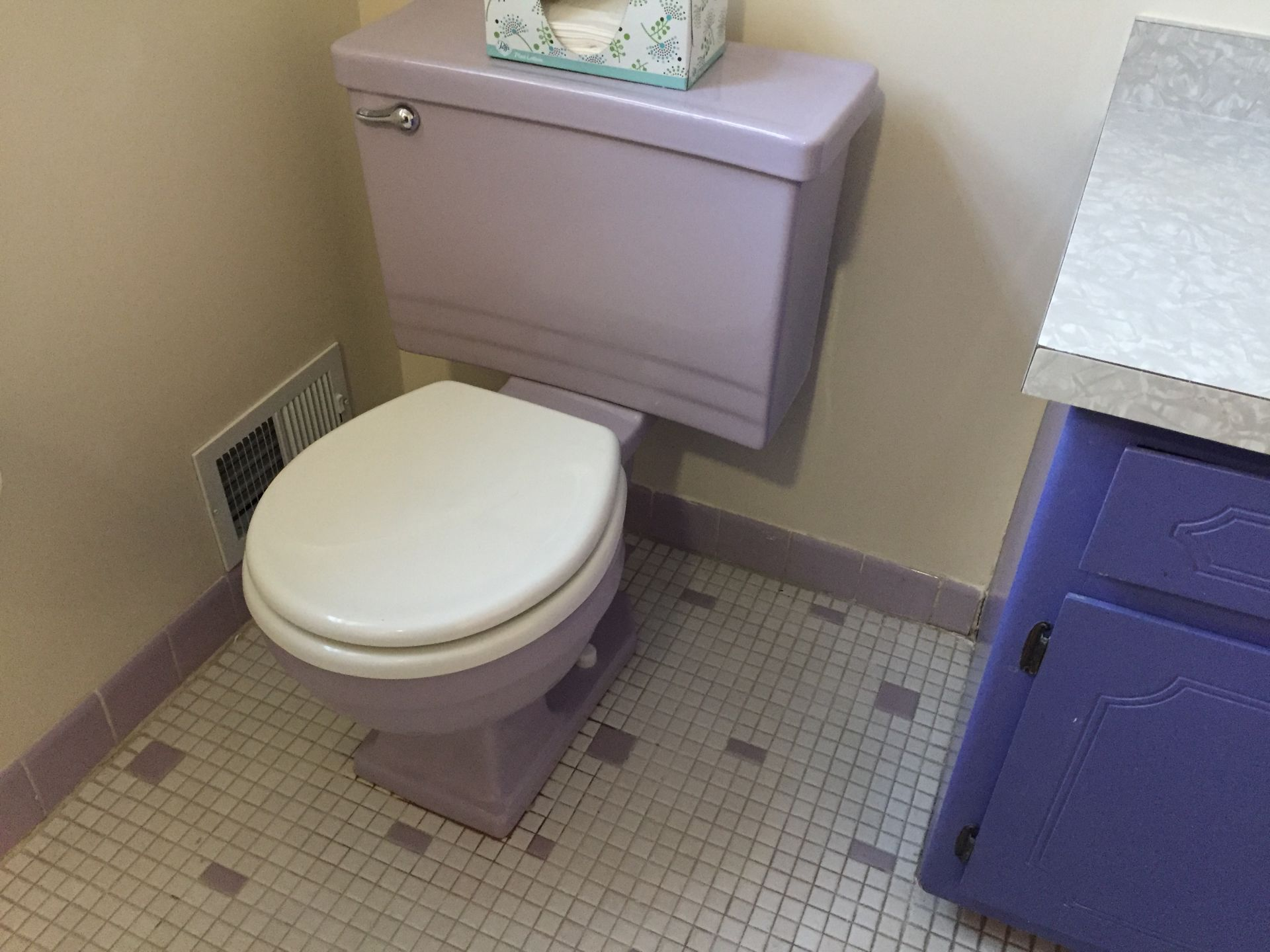 Amazing first – lavender toilet bowl, no, not kidding!