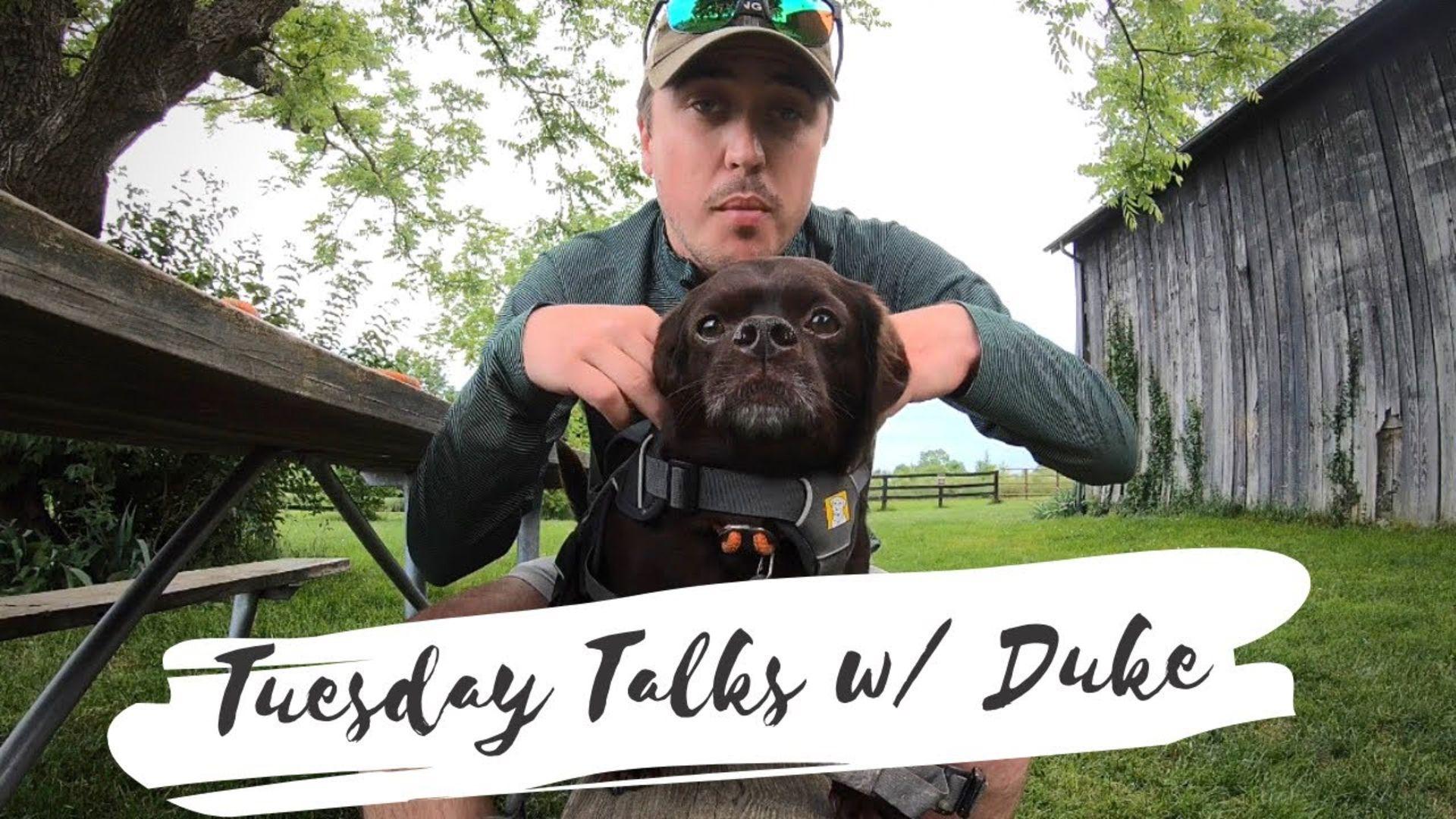 Tuesday Talks with Duke S1:E2 – Duke got stung by a bee
