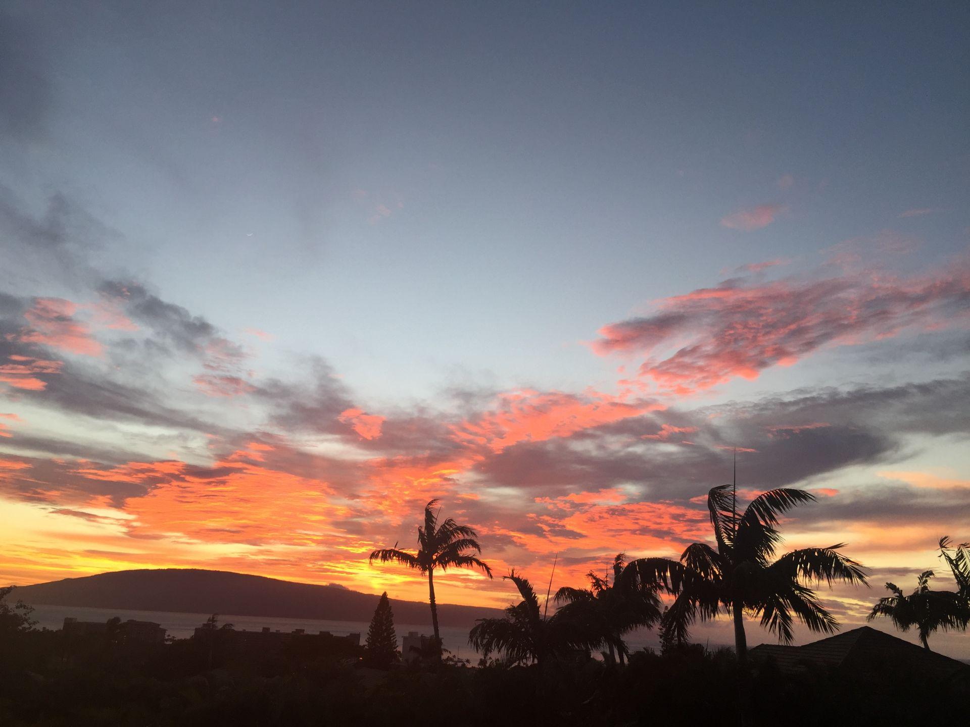 Summer has arrived on Maui