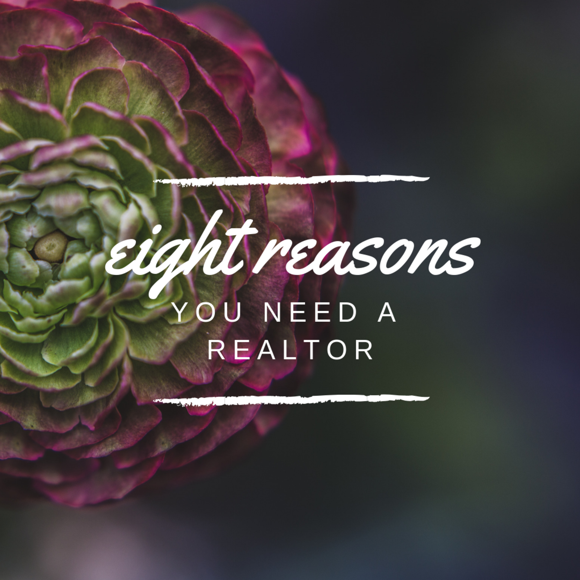 8 Reasons You Need a Realtor