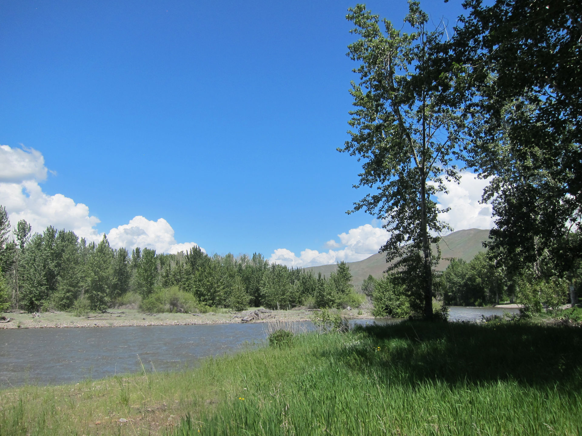 Sunny Lot on The Big Wood River