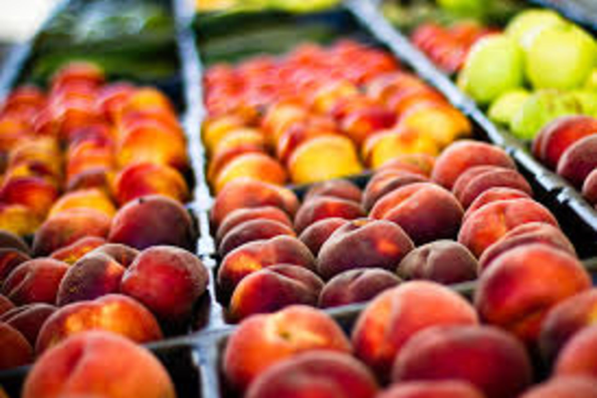 Downtown Green Bay – Farmers Market this Weekend!