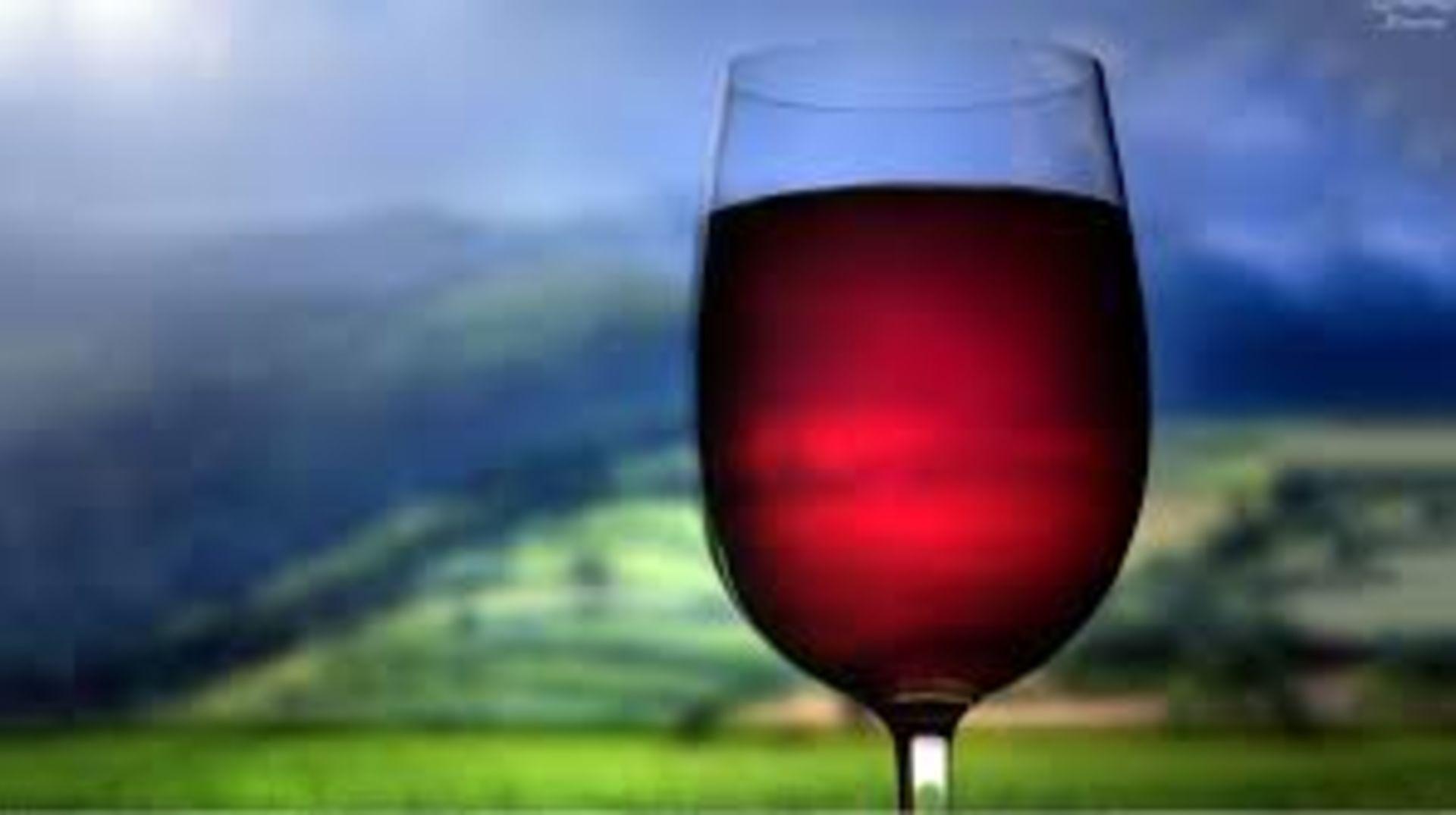 Summer Wine & Food Fest – Parallel 44 Winery