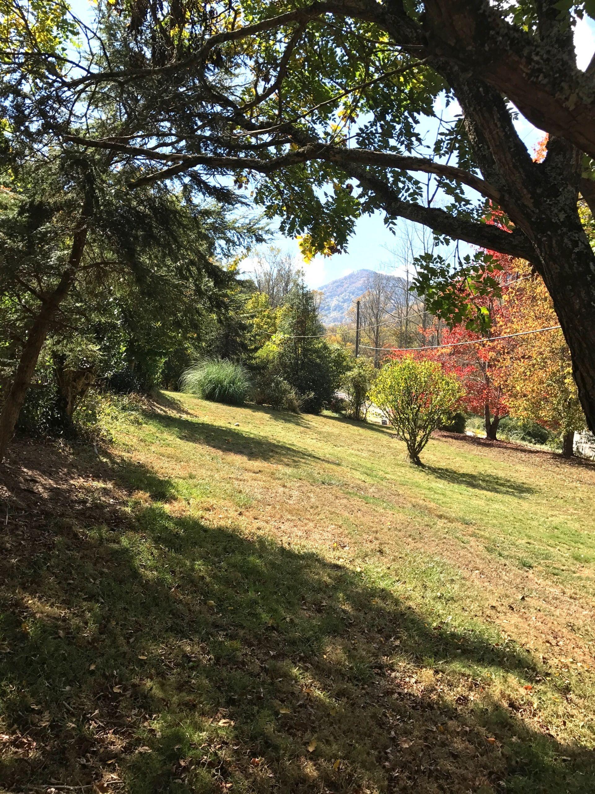 Barnardsville NC, Homes For Sale