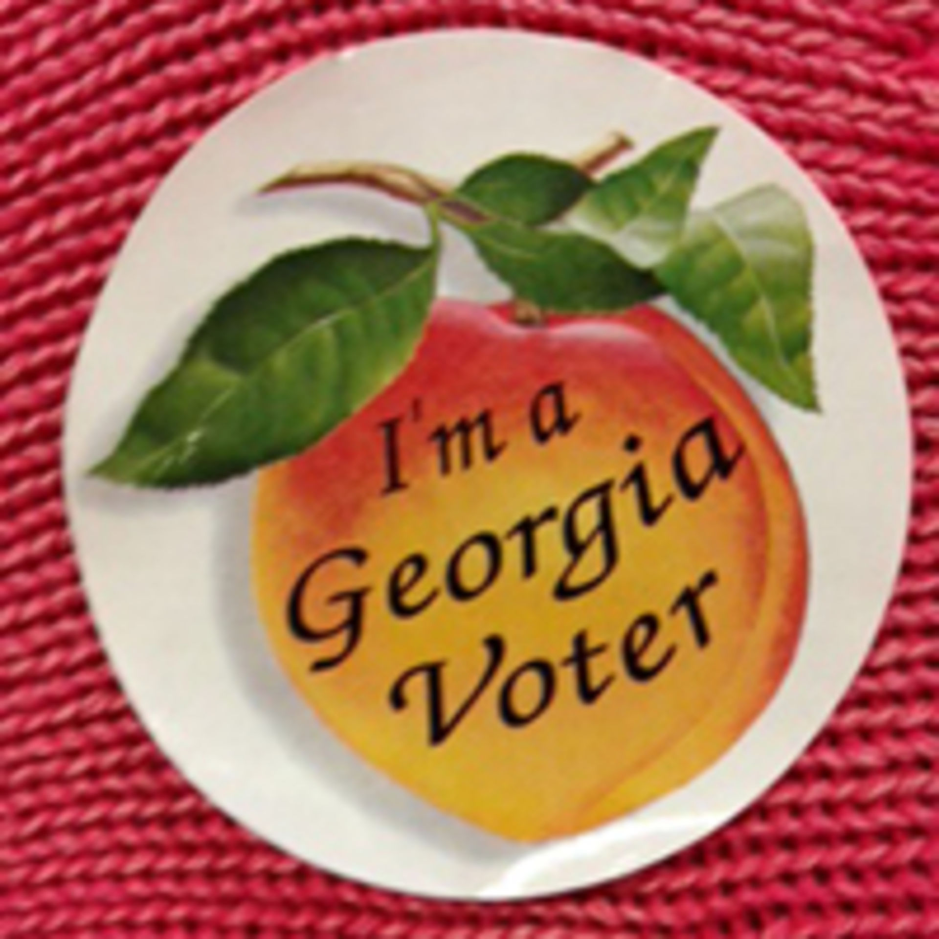 Early Voting Starts in Georgia, 5 Amendments on Ballot