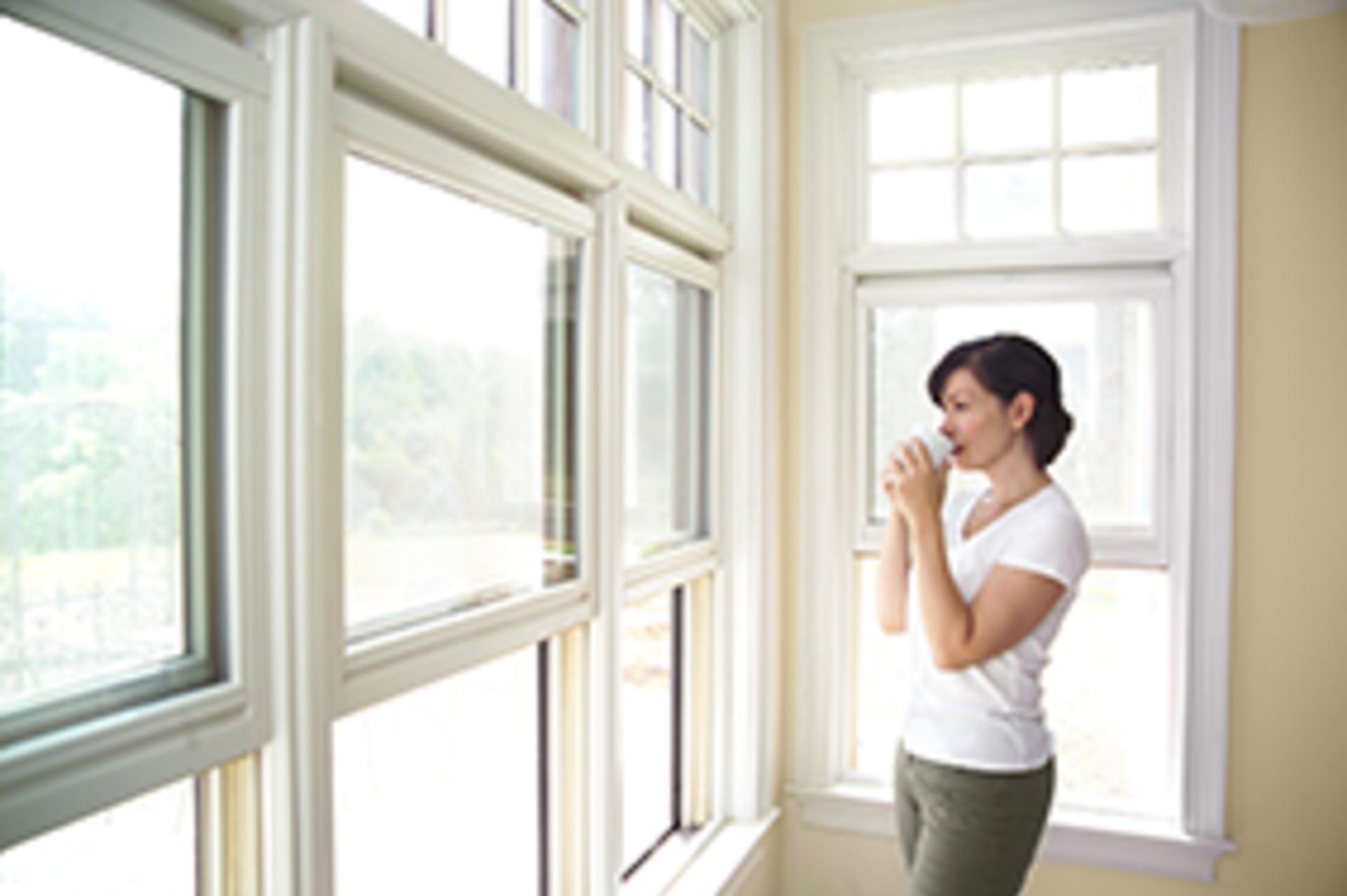 Should you replace your windows?