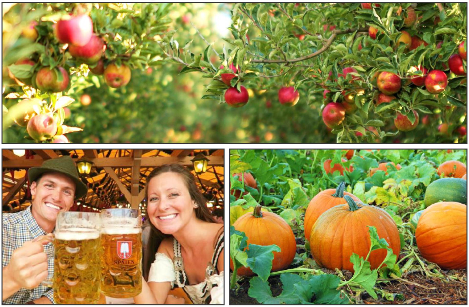 Schulien and Associates' Weekend Guide: (Sept. 28-30)