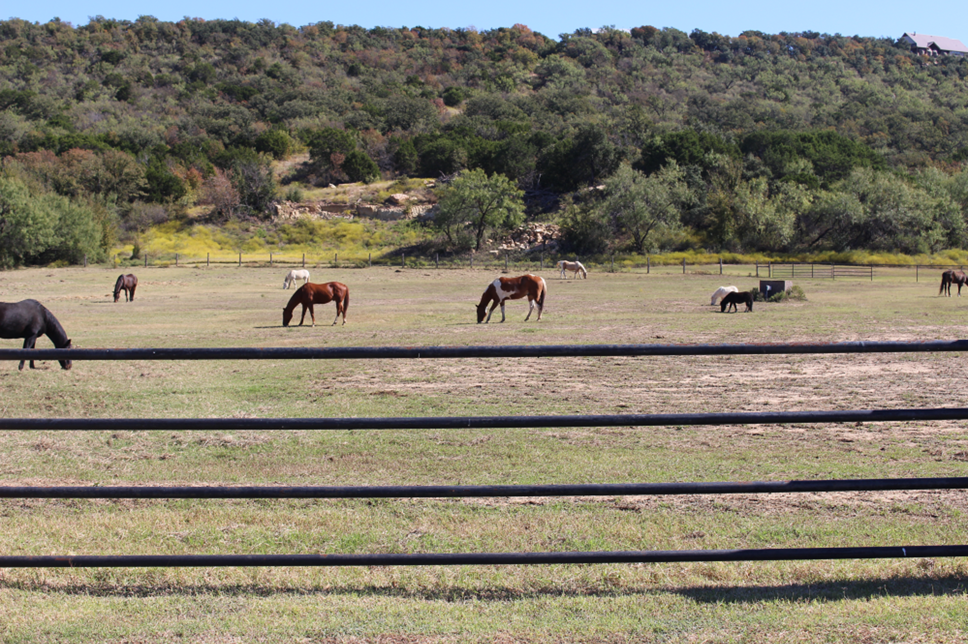 Ready for your OWN Texas Ranch Home?