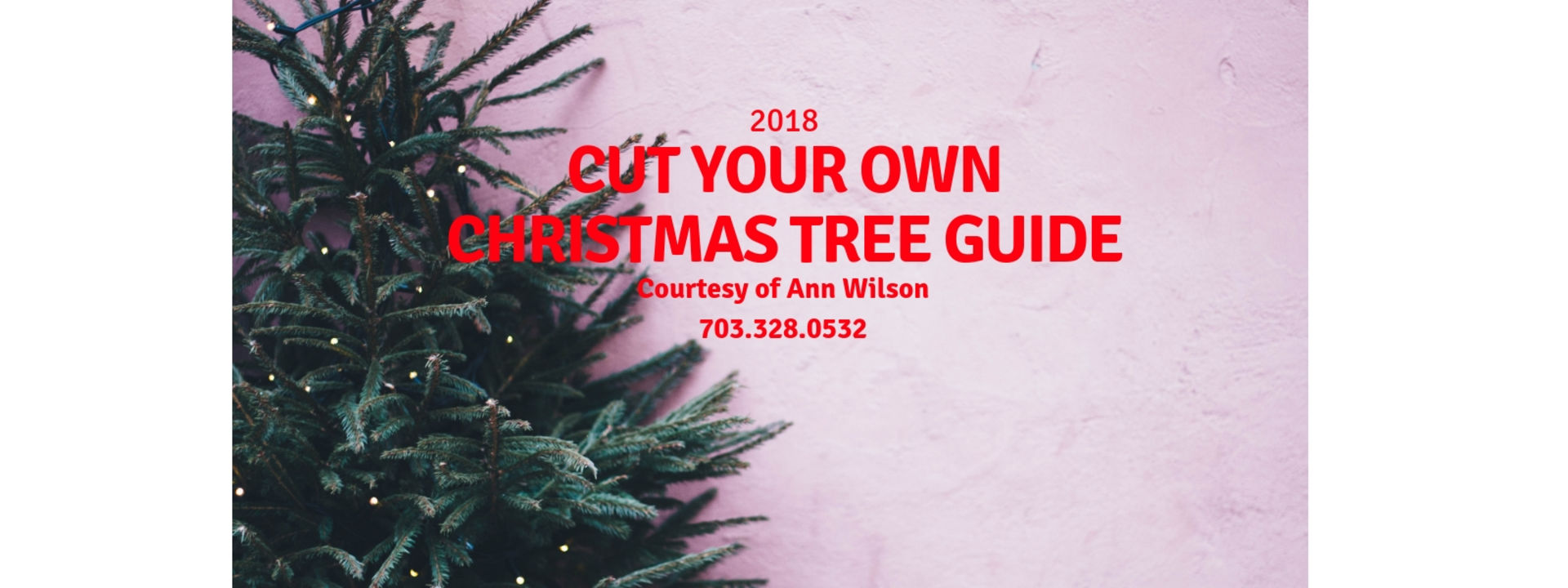 Cut Your Own Christmas Tree Guide