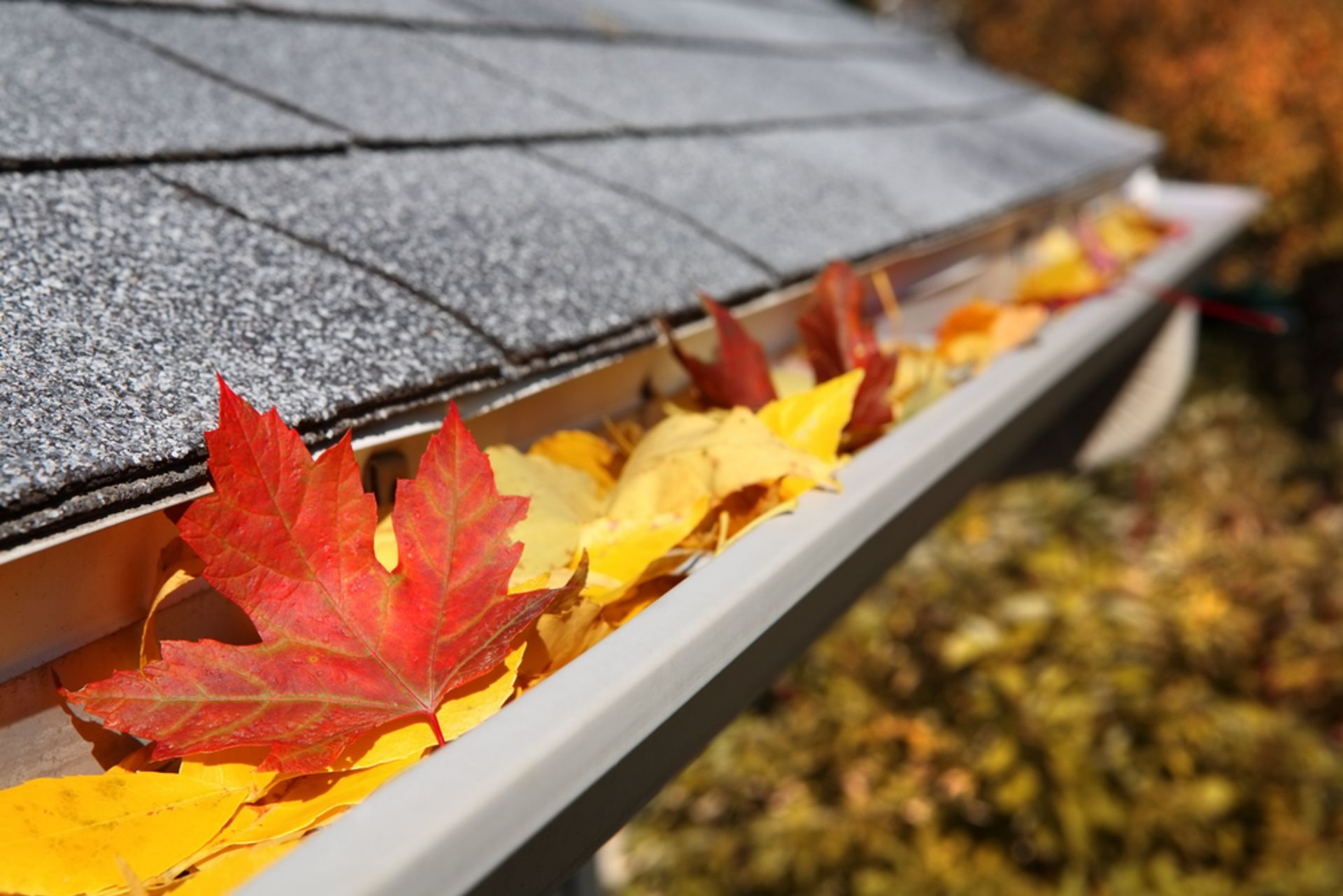 Maintenence Tips To Prepare for Winter