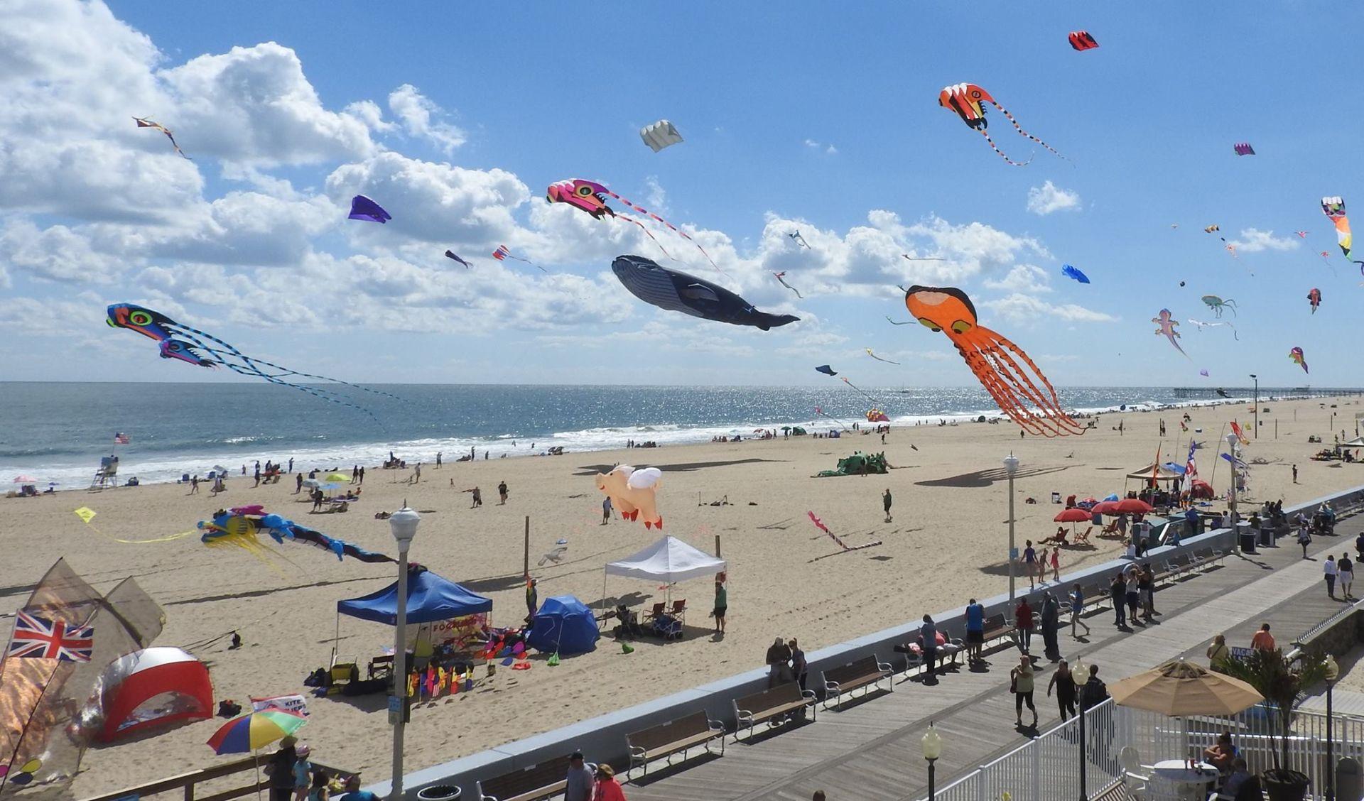 Sunfest Kite Festival