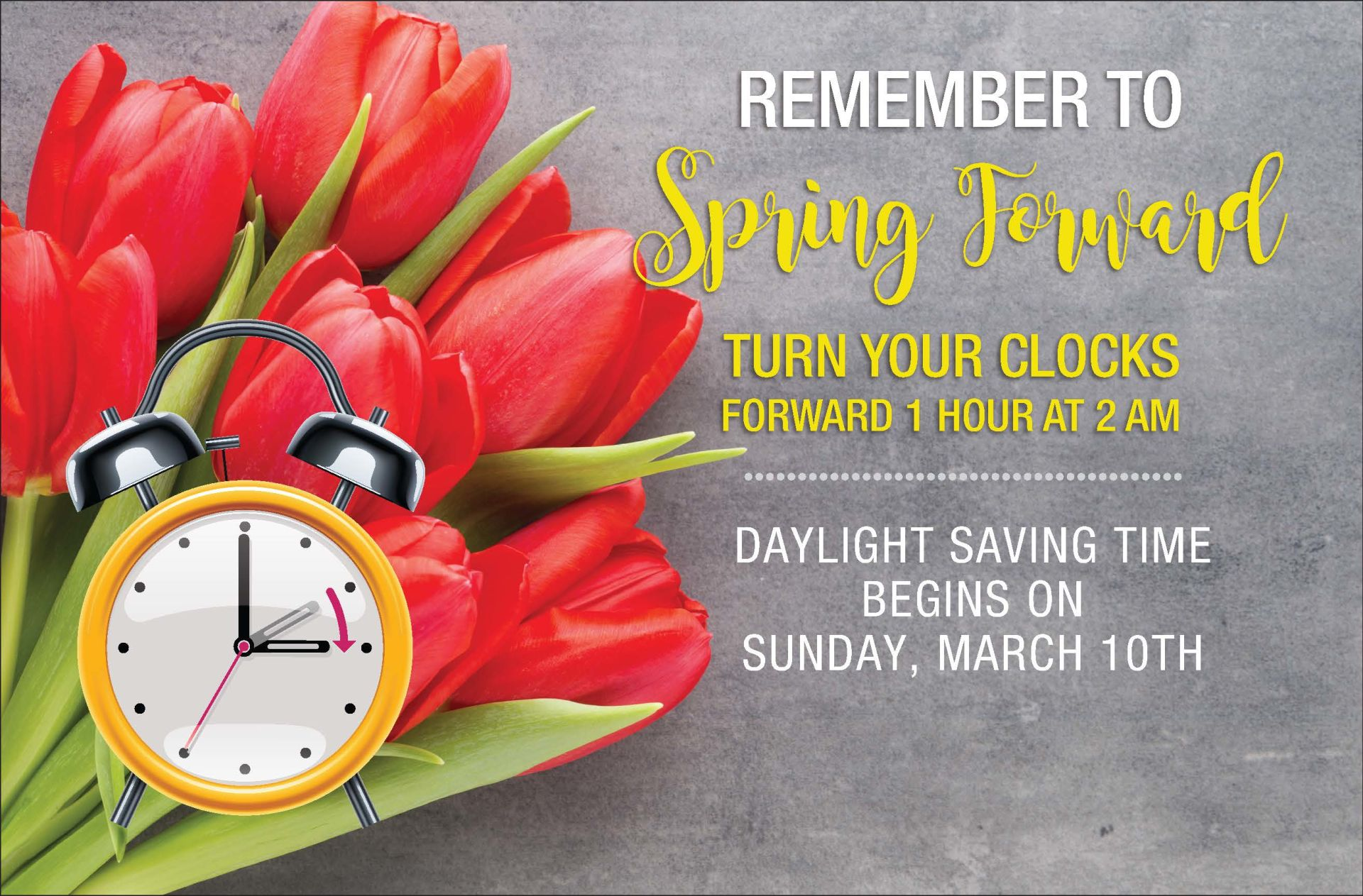 Spring Forward into Home Maintenance!!