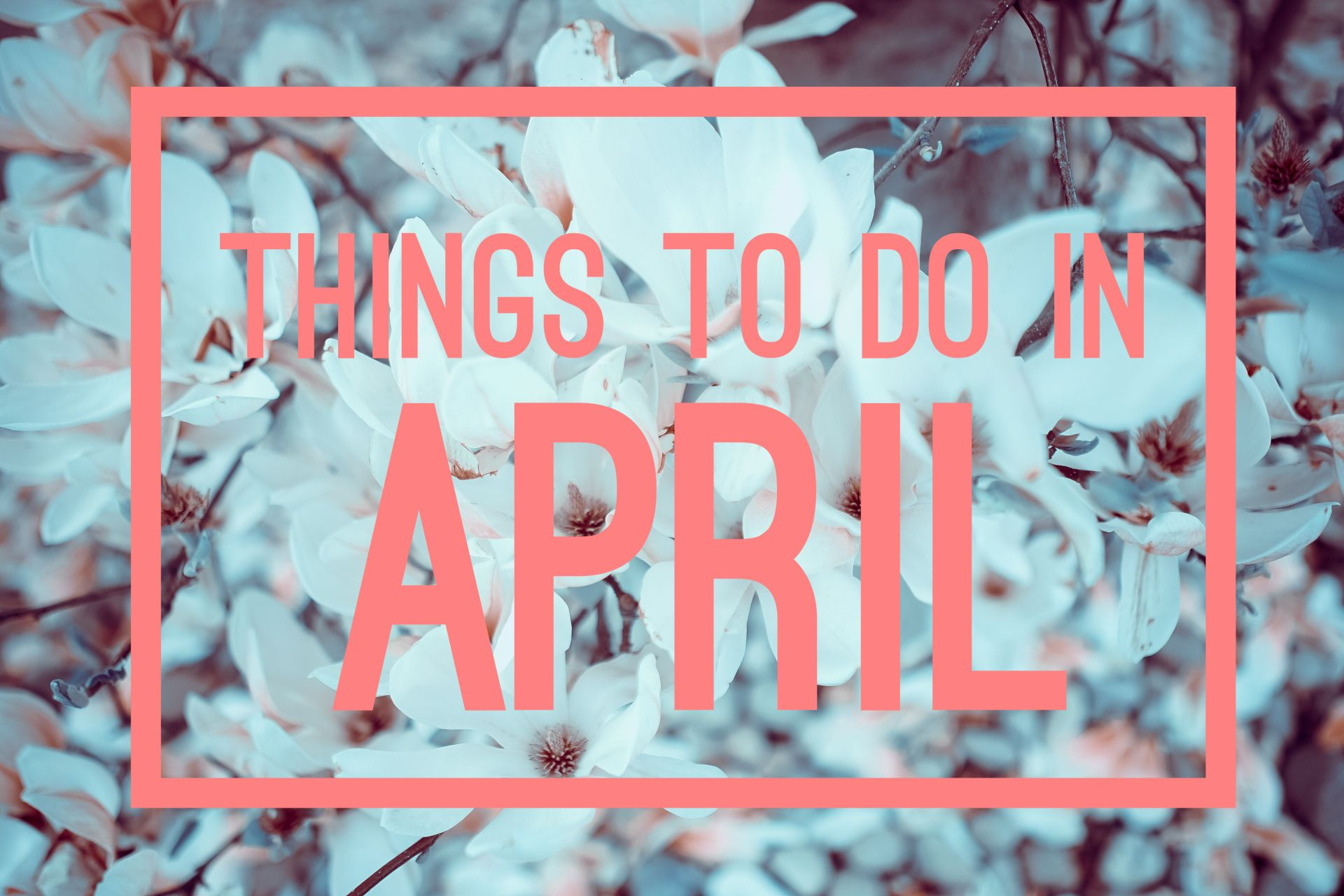Happy Spring! Things to do in April