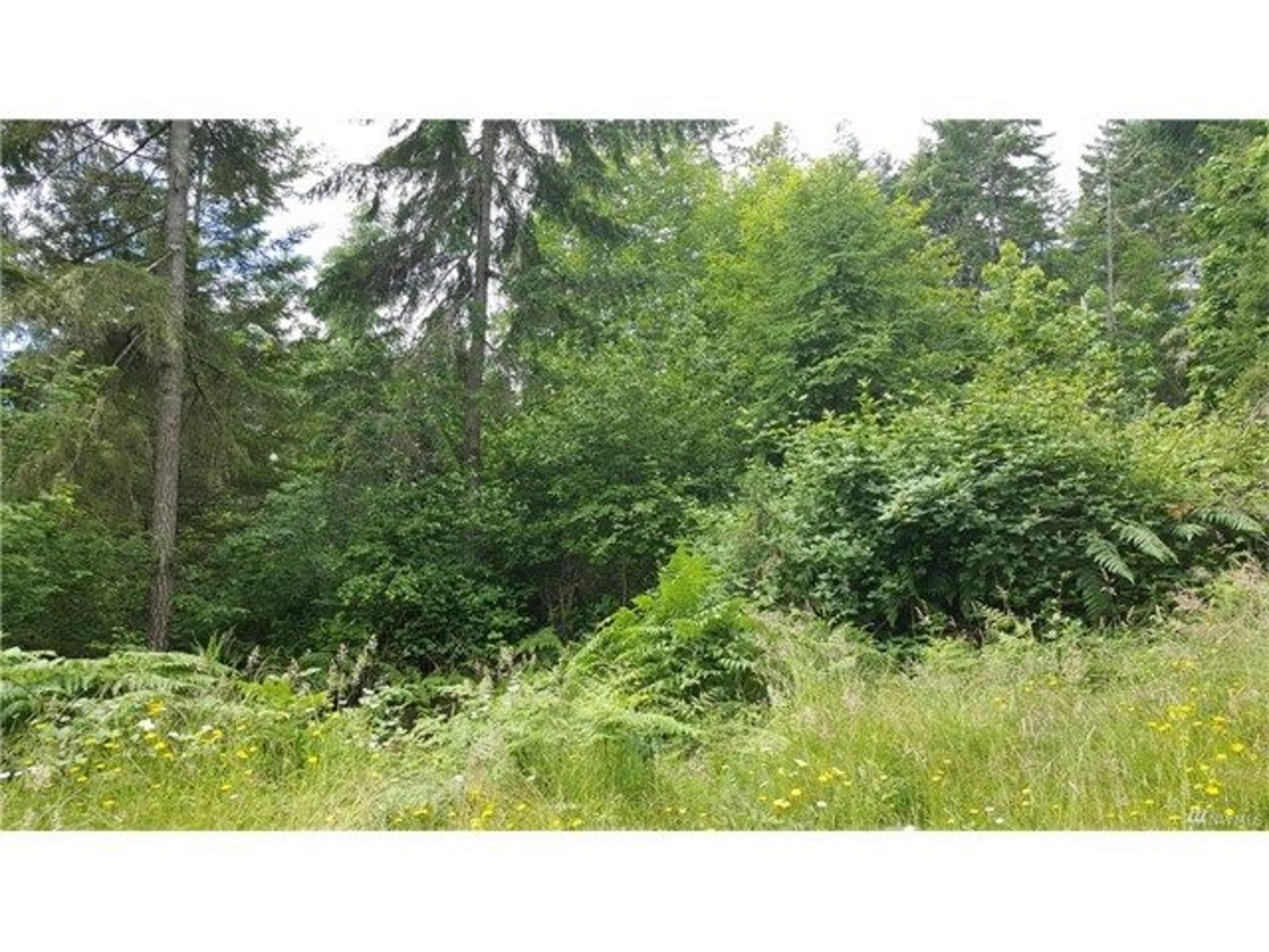 Ready to Build .6-Acre Lot Overlooking Gig Harbor's Rocky Bay