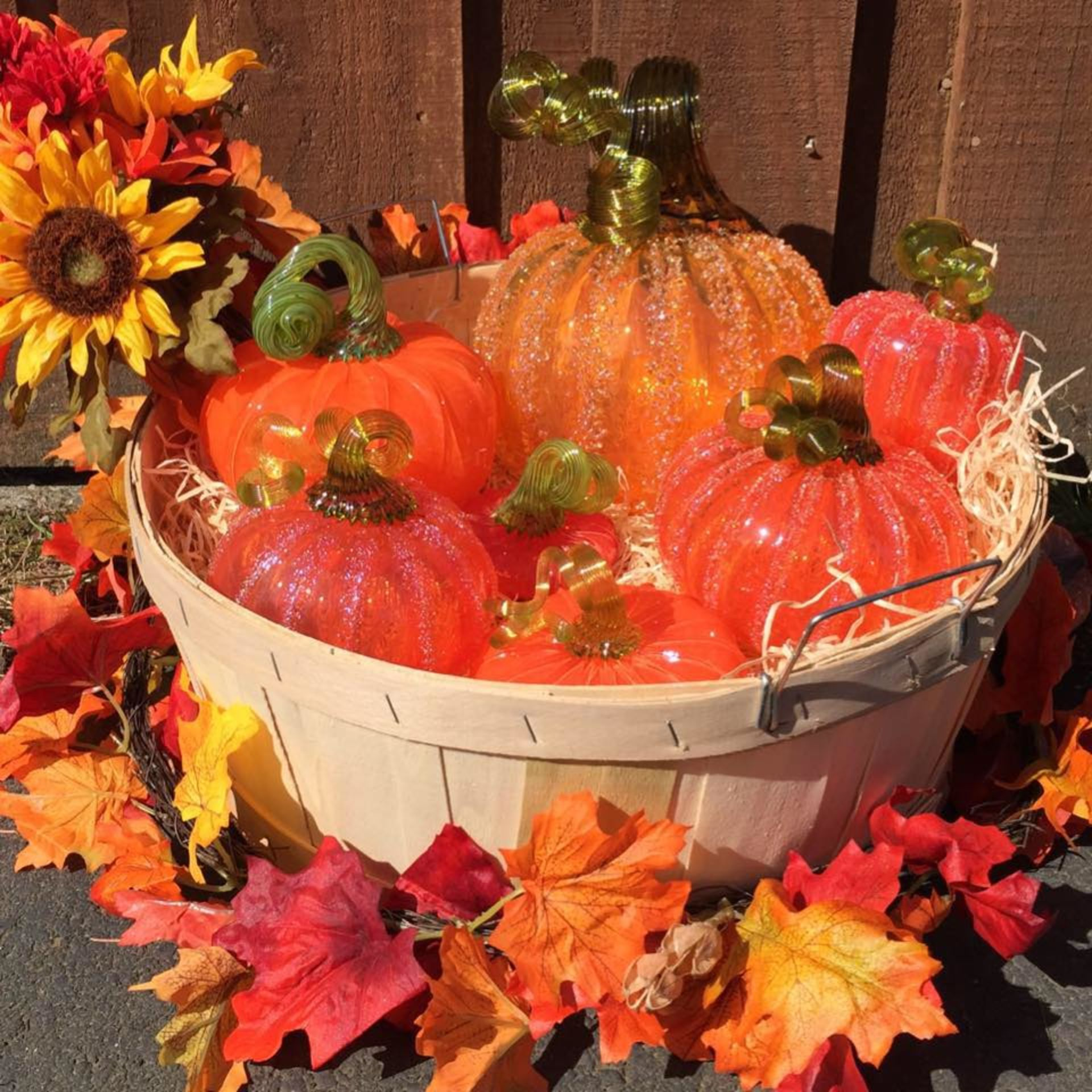 Enjoy Autumn in Gig Harbor this Weekend!