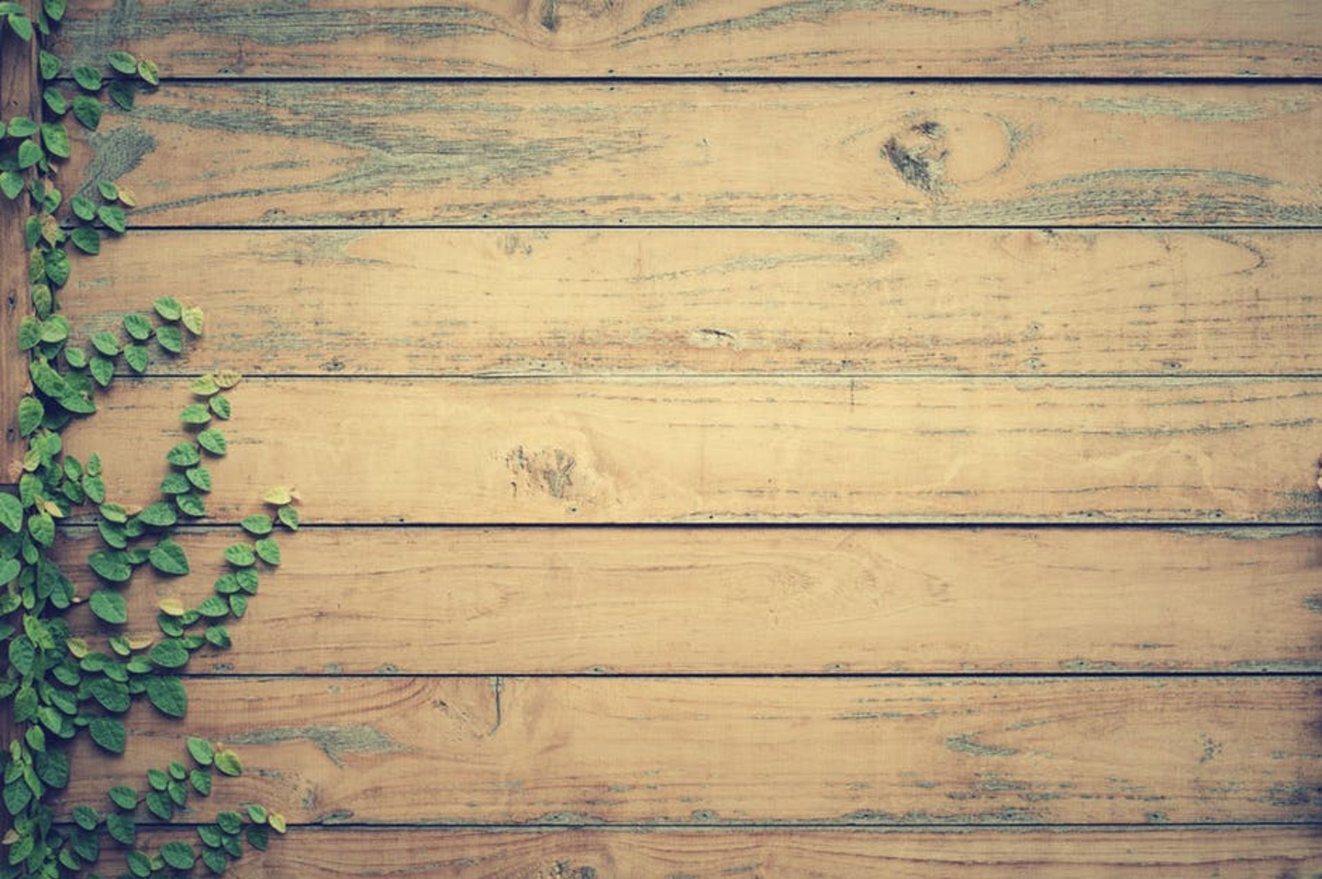 5 Tips for Keeping Your Wood Deck in Pristine Condition