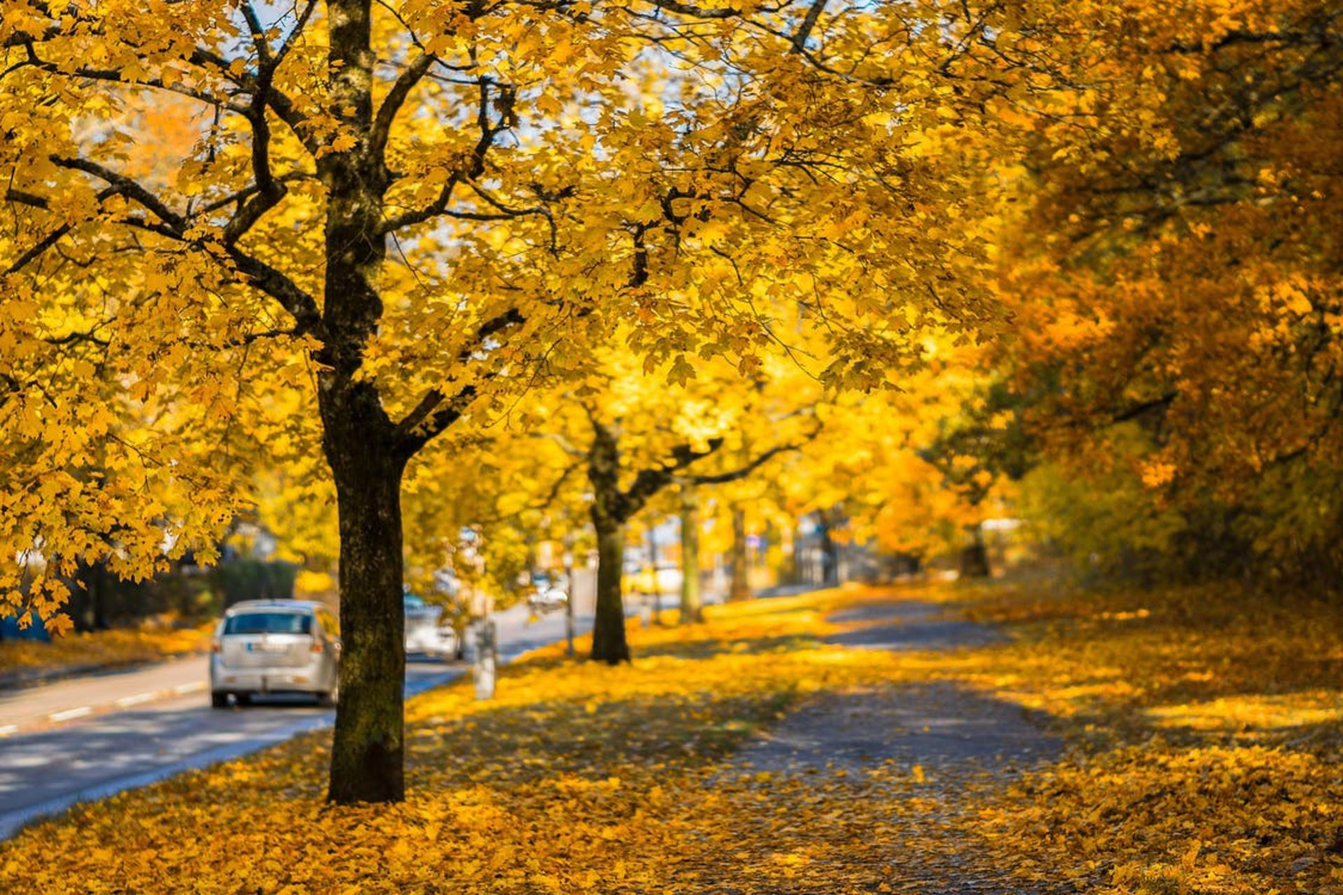 Autumn is a great time to sell! Here's why…