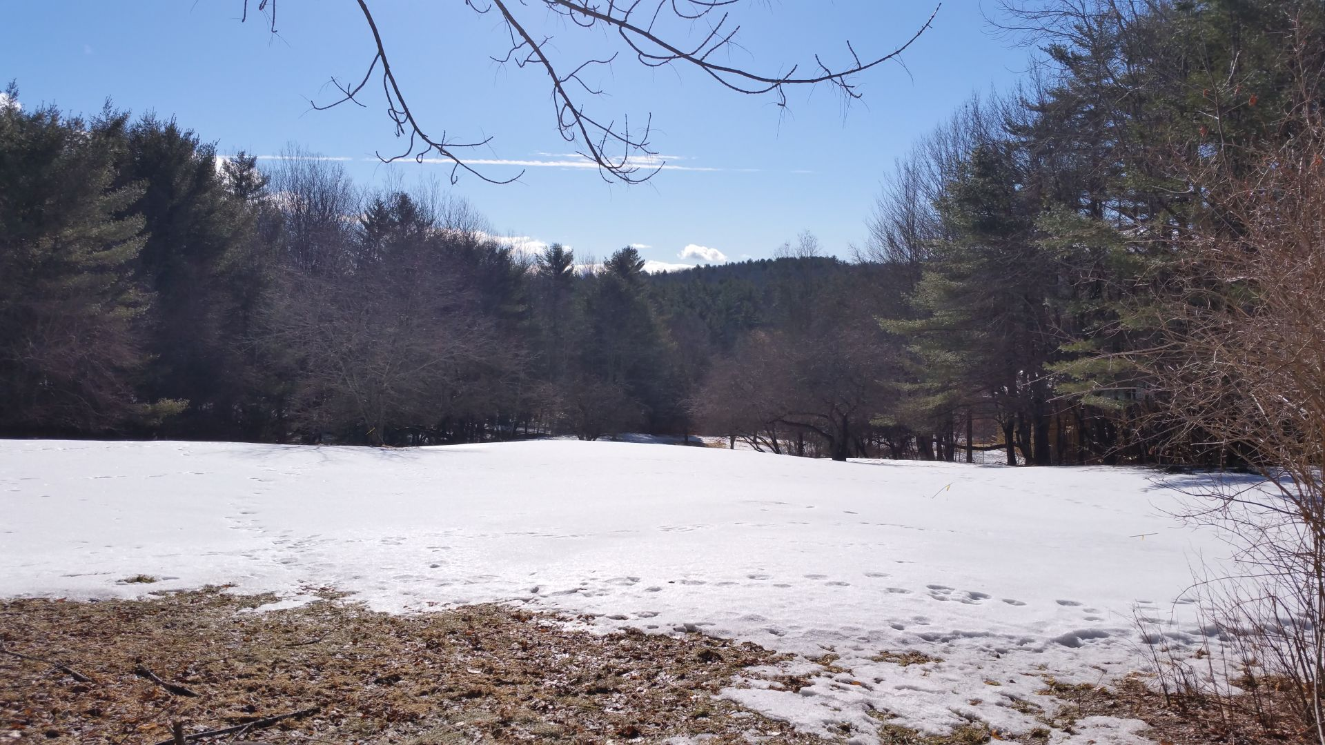 Cotton Mountain Rd; Lot 3, Wolfeboro NH 03894