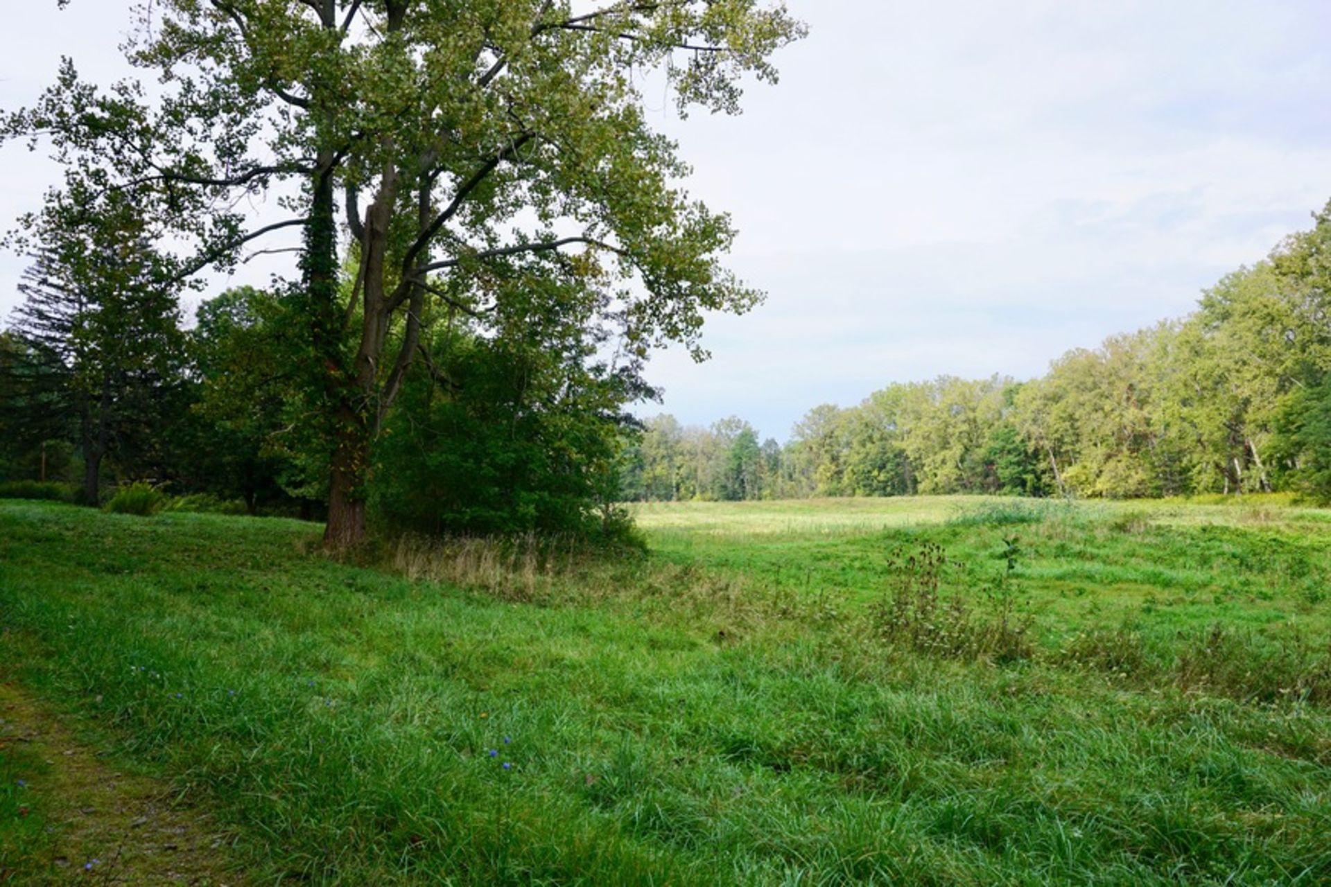 Fall Bonanza Land Sale – 408 Acres